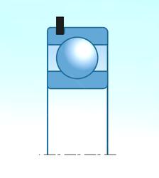 Подшипник шариковый радиальный 6207N